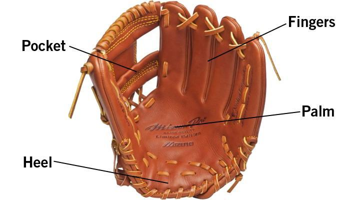 Anatomy of a Youth Baseball Glove